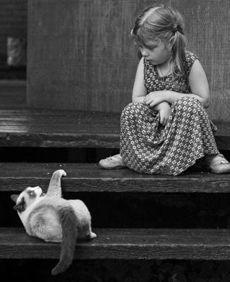 Fotografia infantil  - Página 8 Relacion-entre-gatos-ninos