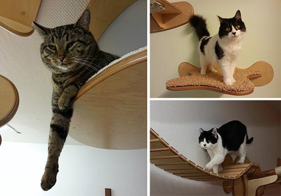 Muebles originales para gatos mundo gatos - Muebles zapateros originales ...