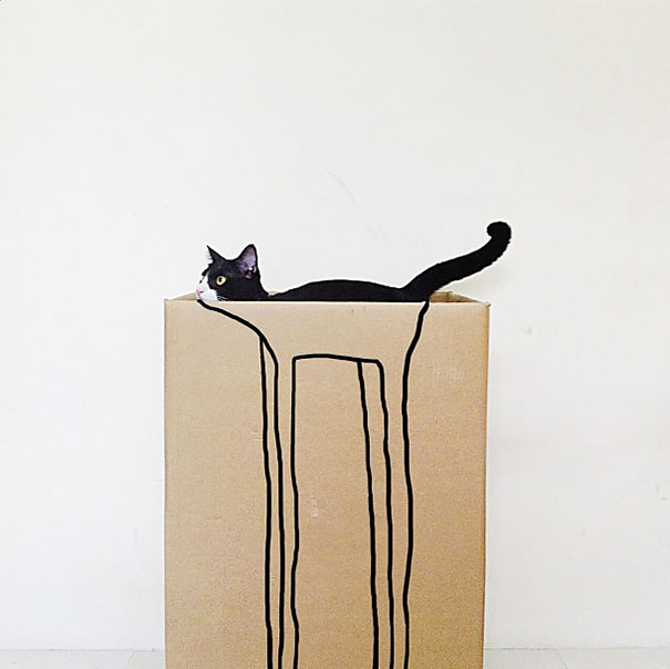 Gatos camuflados de una forma perfecta (22)