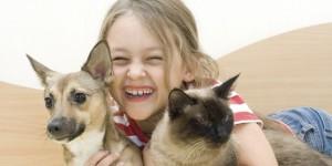historia-de-los-gatos-y-los-perros